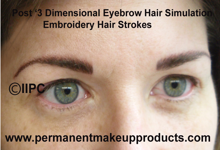 What is an embroidery eyebrow cosmetic tattoo league of for 1 salon eyebrow embroidery